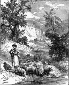 Following the Shepherd's Voice