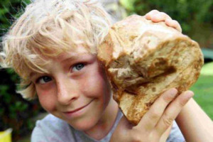 kid-with-ambergris
