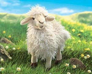 SheepPuppet